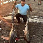 Thresher.shark_Goleta.4.jpg