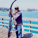 Thresher.shark_Goleta.10.jpg
