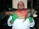 Sheephead_SIP_2007_Big1.2.jpg