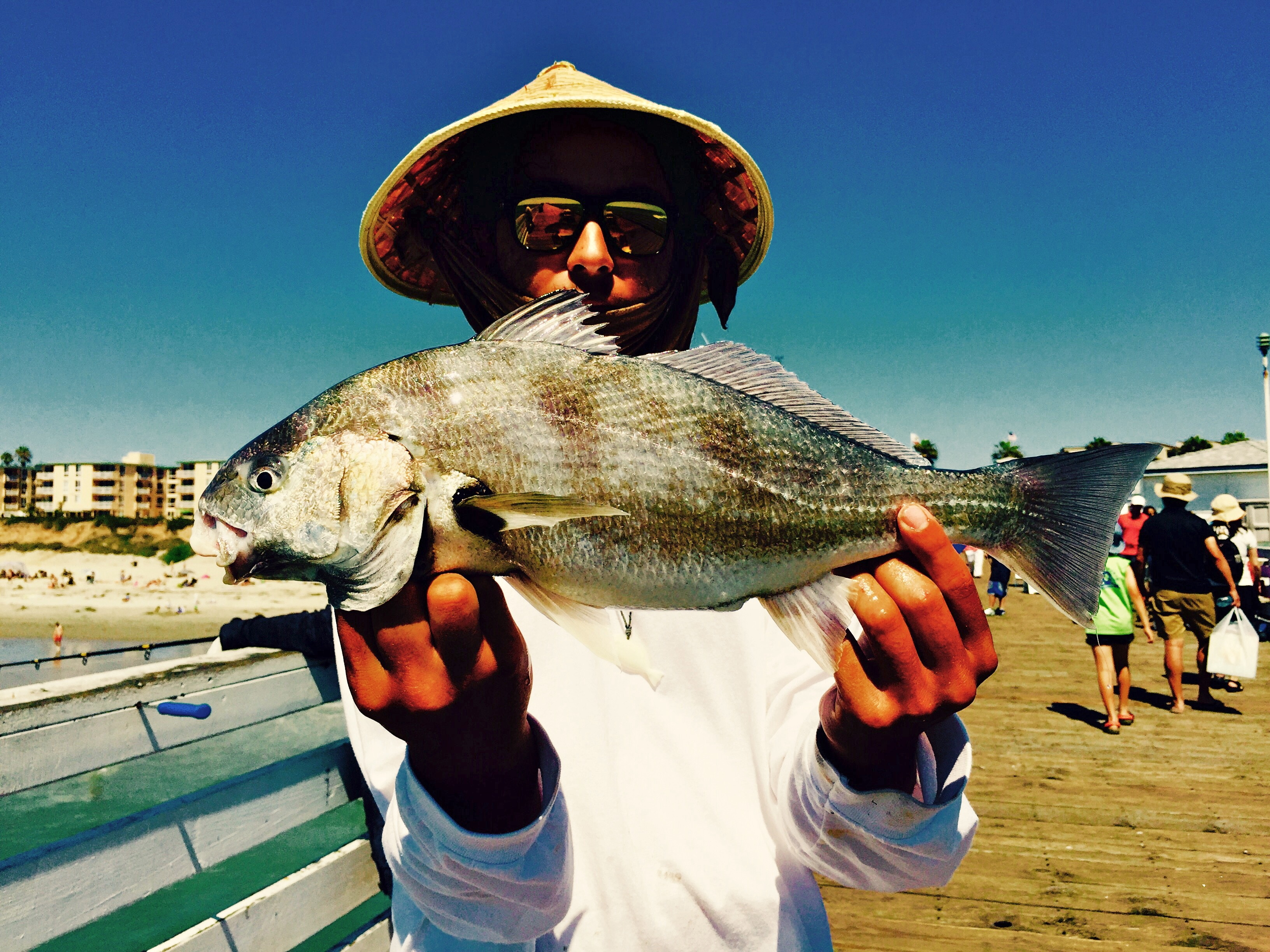 Spotfin Croaker - Pier Fishing in California