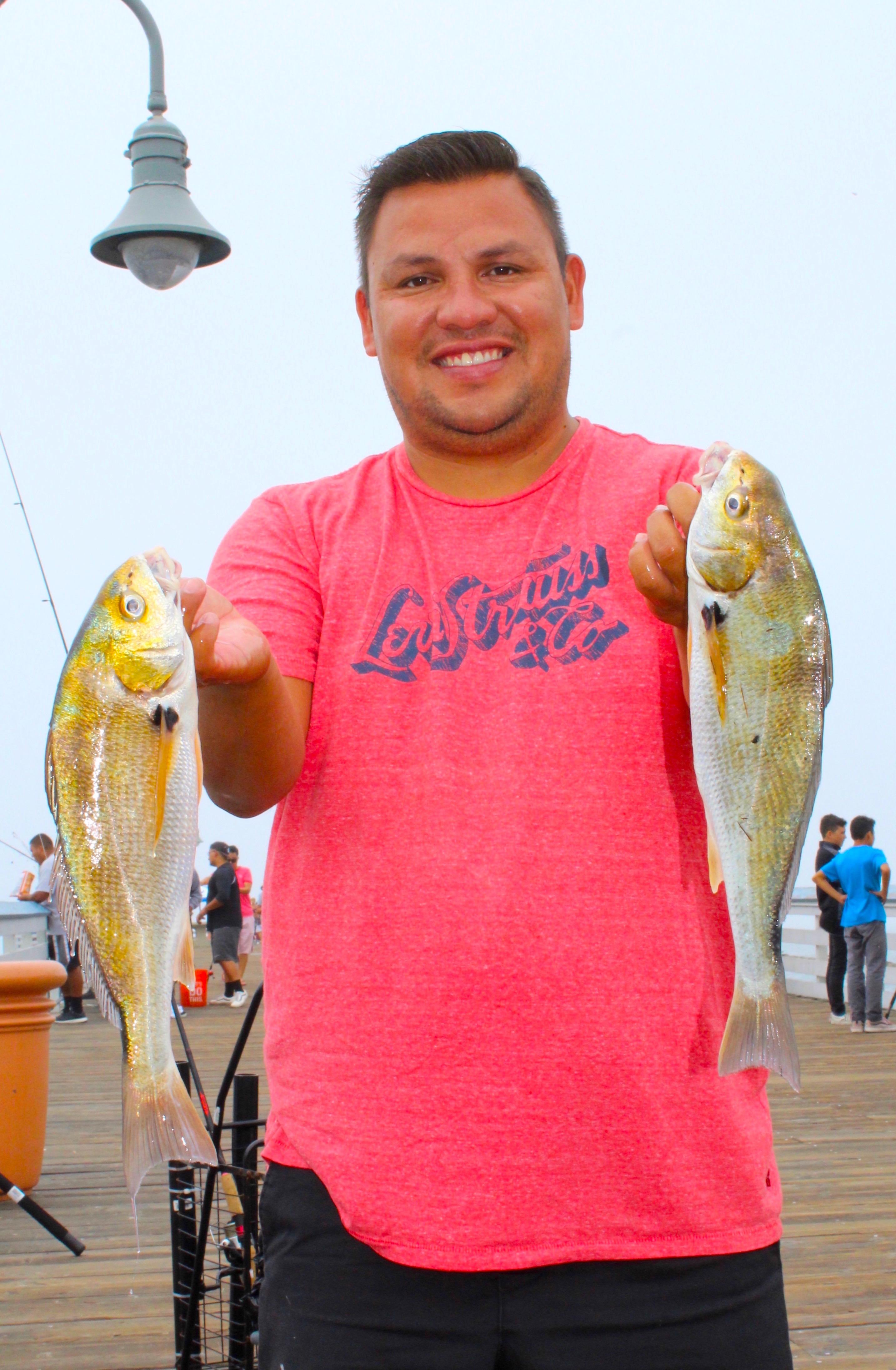 Spotfin Croaker - Pier Fishing in California